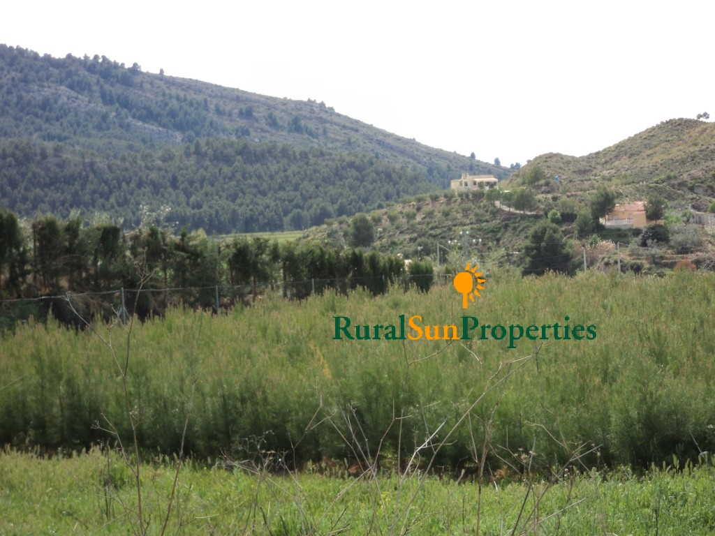 Plot for building in Cehegin, Murcia