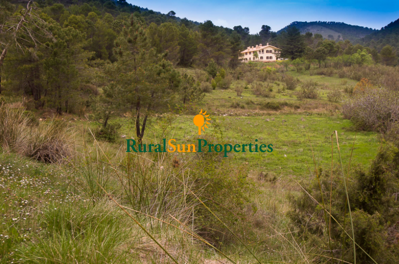 Manor Country Estate for sale Andalusia