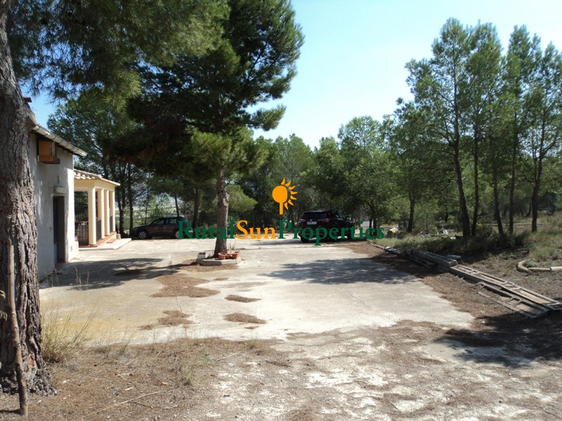 Farmhouse placed on a plot of 170,000 m² with almond trees and forest pines surrounding the house