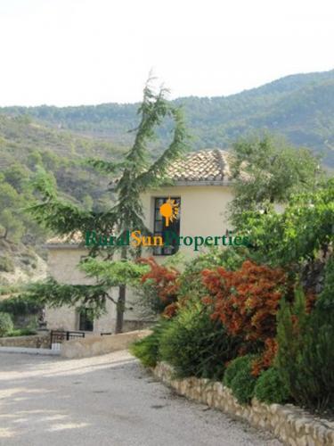 1155_masias-venta-alicante-valencia-02