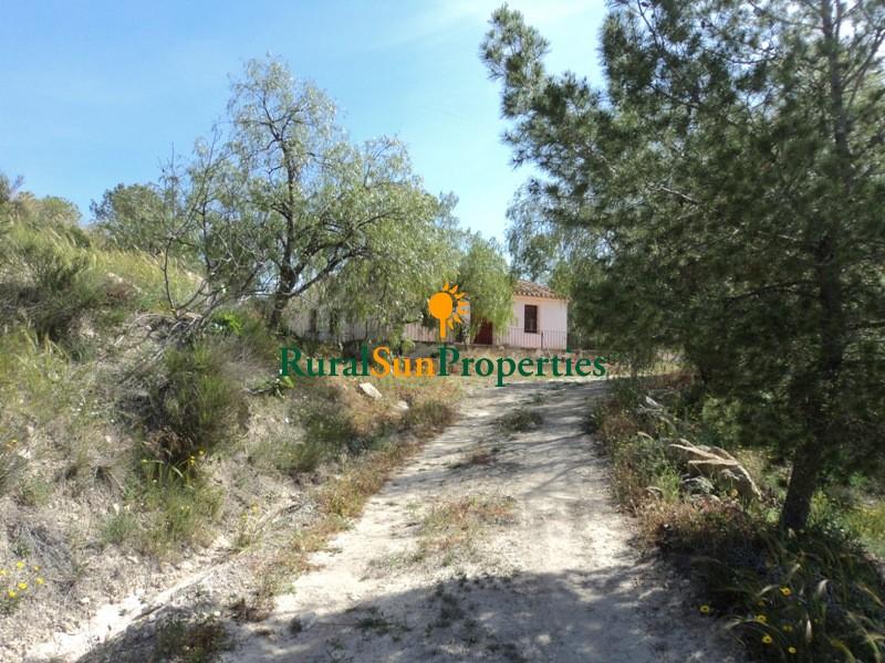 Venta Cortijo tradicional con 7 ha. en Mula