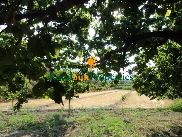 Parcela para casa de campo en Moratalla