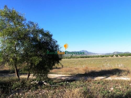 1013_finca-rural-murcia-mula-04