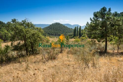 1100_Venta-Finca-Cortijo-con-agua-abundante-y-caza-04