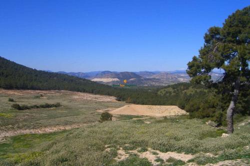1130_Venta-finca-coto-caza-y-labor-Murcia-Sierra-Espuna-03