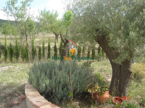 1133_Venta-Casa-Campo-Ricote-Murcia-03