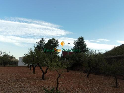 1137_venta-chalet-bullas-03