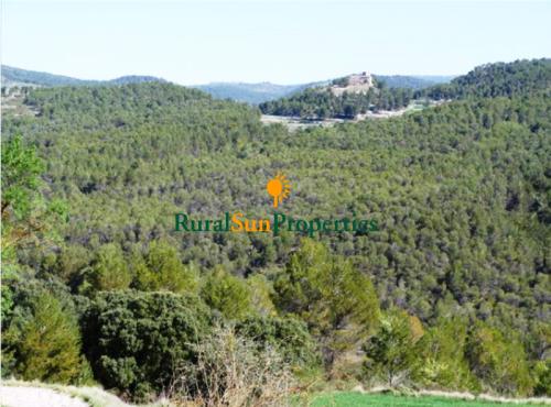1313_masia-alicante-valencia-06