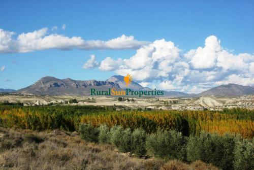 1353_Casa-de-campo-provincia-Granada-03