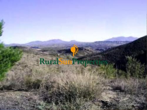 1531_Casa-de-Campo-con-Parcela-Lorca-Murcia-04